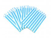 Light Blue Candy Striped Bags